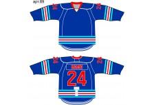Хоккейный свитер анатомический арт.89